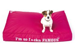 Doggie famous